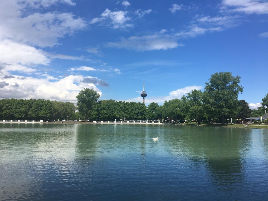 Rheinparkpark
